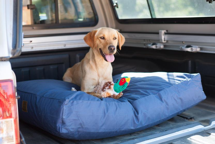 All Weather Water Resistant Navy Dog Mattress - House Of Paws - My Pet Gift Box