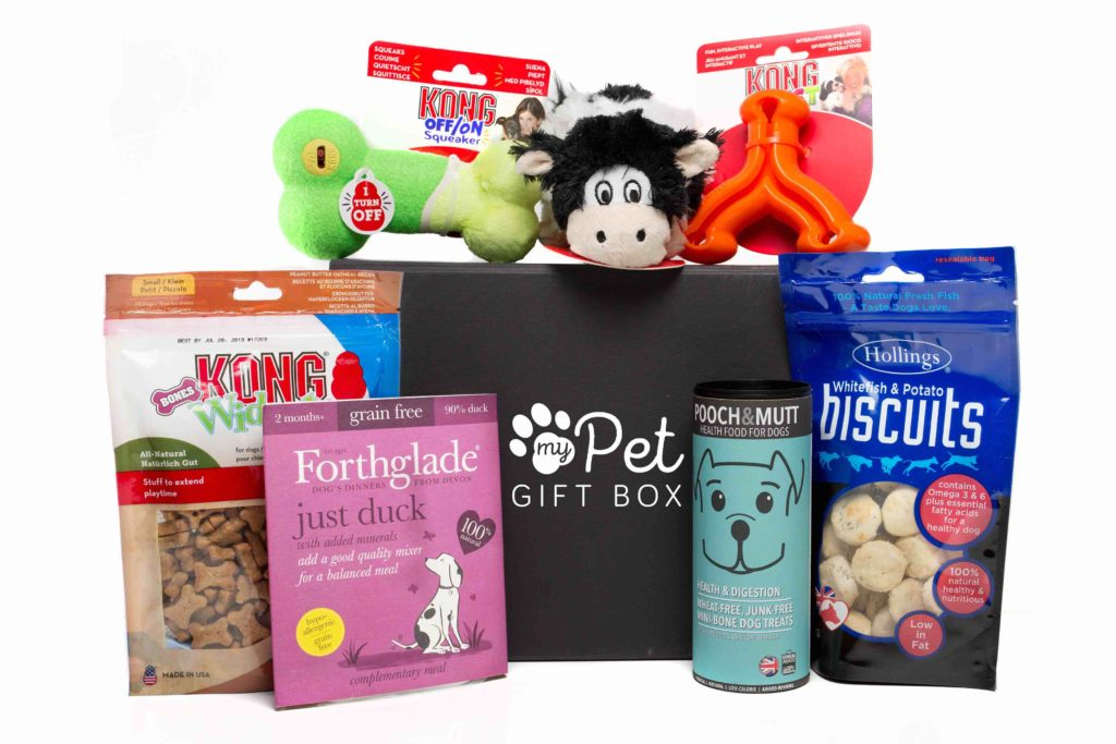 The Spring Gift box For Dogs