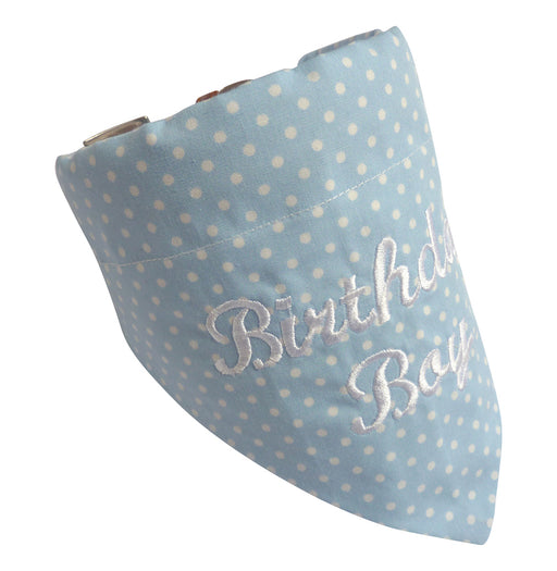 Birthday Boy Dog Bandana - My Posh Paws - My Pet Gift Box