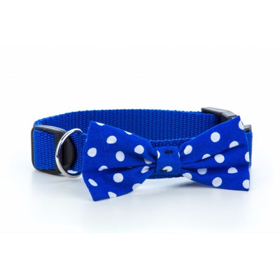 Blue Polka Dot Bow Dog Collar - Pet Pooch Boutique - My Pet Gift Box