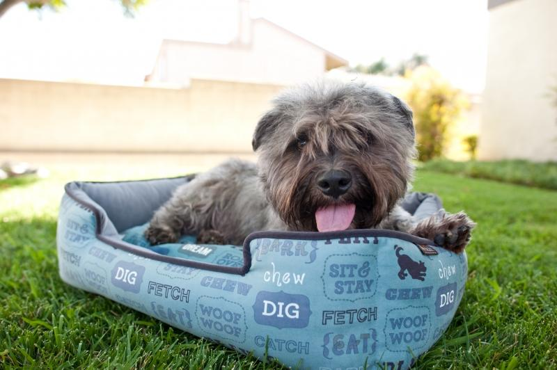 Dog's Life Lounge Dog Bed - In Vogue Pets - My Pet Gift Box