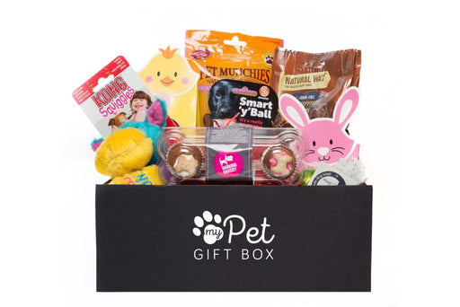 The Limited Edition Easter Gift Box For Dogs - My Pet Gift Box - My Pet Gift Box