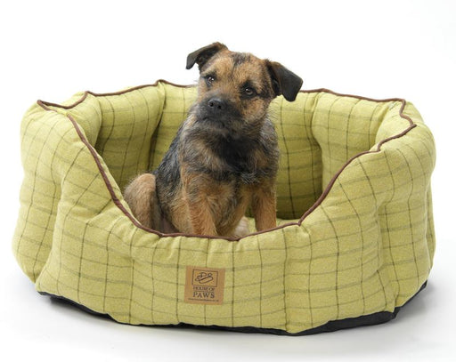 Green Tweed Oval Dog Bed - House Of Paws - My Pet Gift Box
