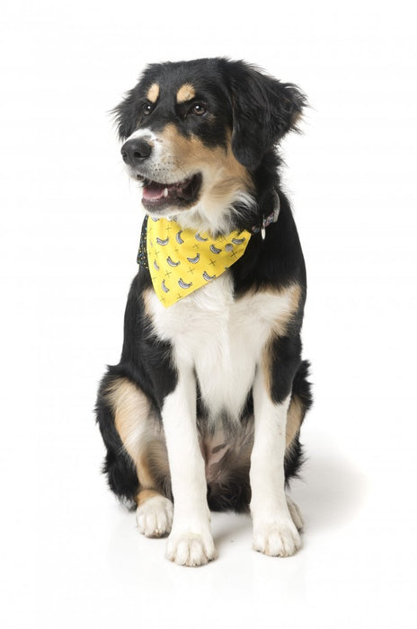 Fuzzyard Monkey Mania Dog Bandana - In Vogue Pets - My Pet Gift Box