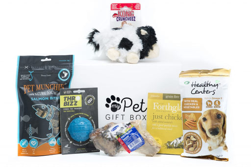 The Winter Warmer Gift Box for Dogs