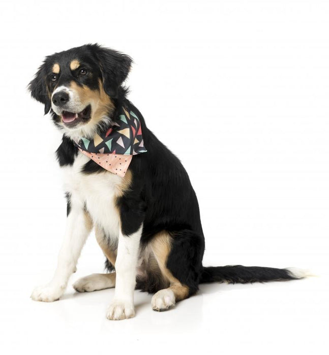 Fuzzyard RAD Dog Bandana - In Vogue Pets - My Pet Gift Box