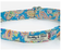 Blue Paisley Print Dog Collar - Barkley & Fetch - My Pet Gift Box