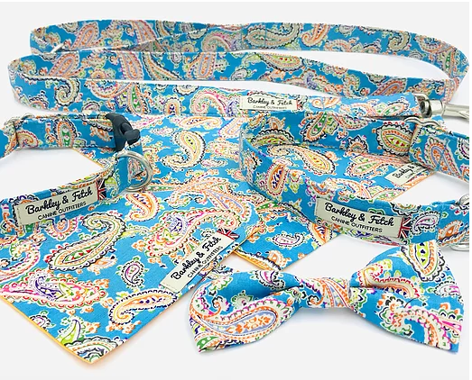 Blue Paisley Print Dog Lead - Barkley & Fetch - My Pet Gift Box