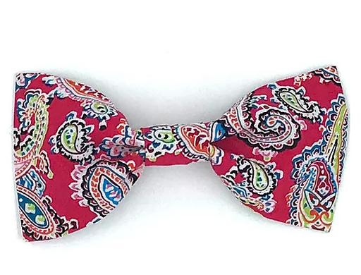 Red Paisley Print Dog Bowtie