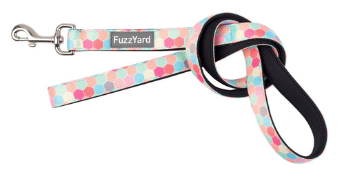 Fuzzyard The Hive Dog Lead - In Vogue Pets - My Pet Gift Box