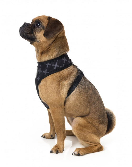 Fuzzyard Yeezy Dog Harness - In Vogue Pets - My Pet Gift Box