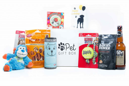 The Personalised Birthday Boy Dog Gift Box - My Pet Gift Box - My Pet Gift Box