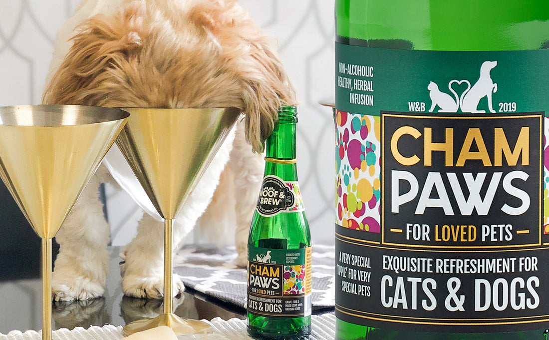 CHAM:PAWS - EXQUISITE REFRESHMENT FOR LOVED PETS - SINGLE BOTTLE - Woof & Brew - My Pet Gift Box