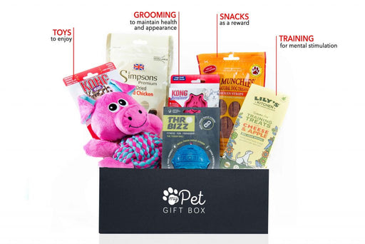 Build Your Own Dog Gift Box