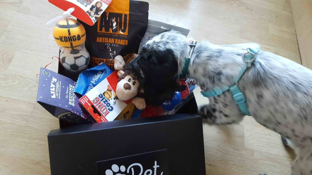 Personalised 6 Monthly Subscription Box For Dogs