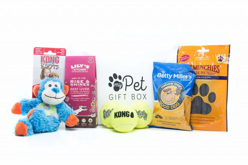 The Get Well Soon Gift Box For Dogs - My Pet Gift Box - My Pet Gift Box