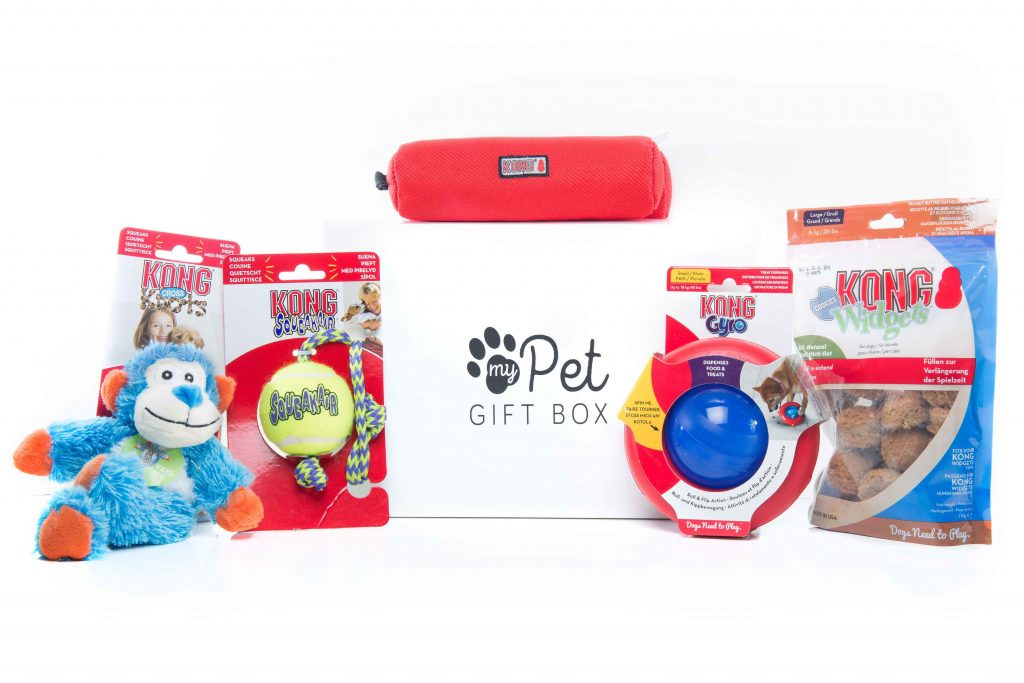 The Kong Gift Box for Dogs
