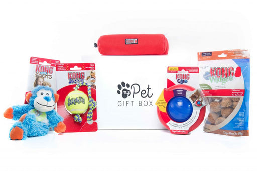 The Kong Gift Box for Dogs - My Pet Gift Box - My Pet Gift Box
