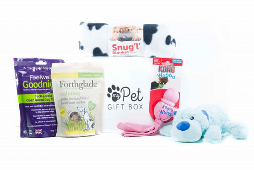 From Me To You Gift Box For Dogs - My Pet Gift Box - My Pet Gift Box