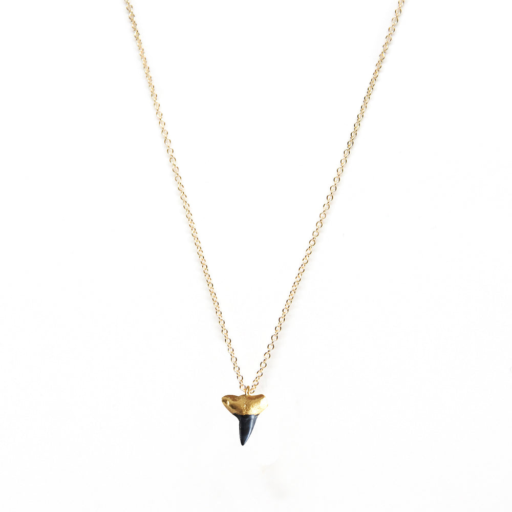 Shark Tooth Black