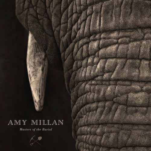 Amy Millan - Masters Of The Burial