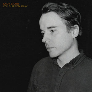 Andy Shauf - You Slipped Away