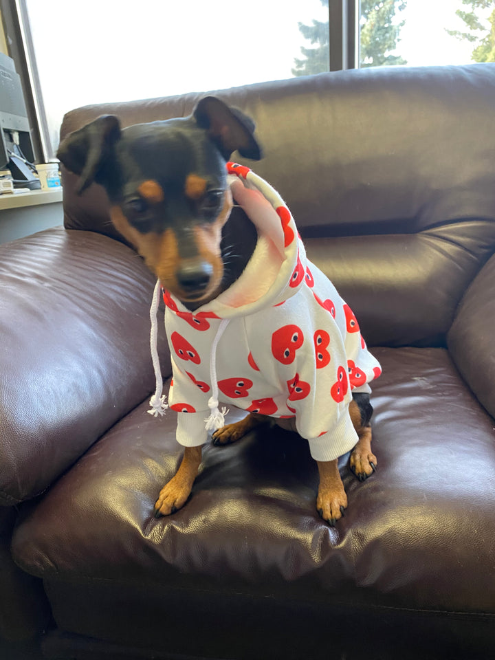 Soft White Cute Dog Hoodie with Red Hearts on it