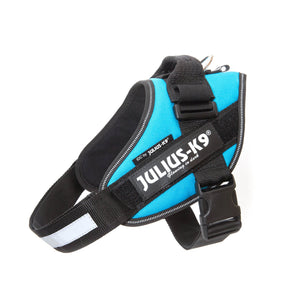 Julius K-9 IDC Power Harness Size 0 Aqua Blue