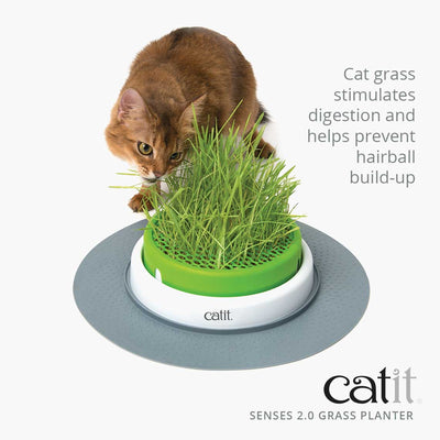 Catit Senses 2.0 Cat Grass Kit
