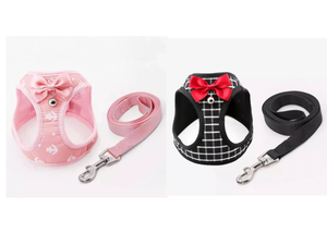 Fashion Harness with Leash for Cats and Small Dogs