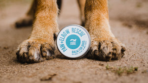 Legendary Canine Paw & Elbow Rescue 60ml