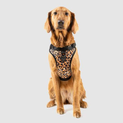 Canada Pooch Everything Harness Water-Resistant Leopard