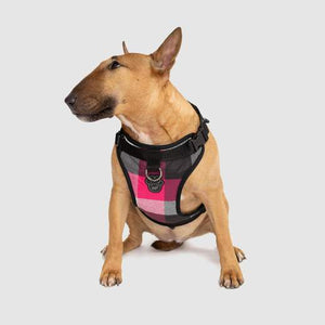 Canada Pooch Everything Harness Water-Resistant Pink Plaid