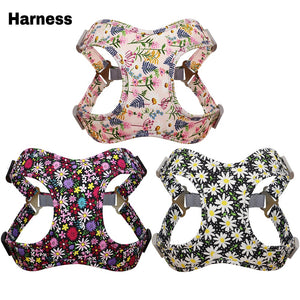 Stylish 3pcs Harness, Collar & Leash Sets in 2 colors & sizes