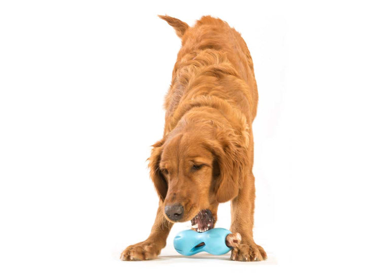Qwizi Dog Toy for Tough Chewers, Plus Treat Toy
