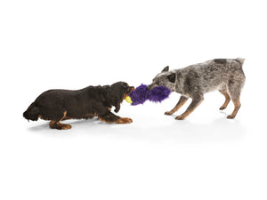 Sanders Fuzzy Tough Dog Toy