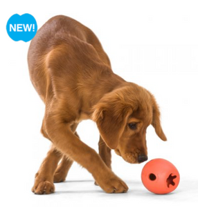Westpaw Rumbl Treat Dispensing Toy