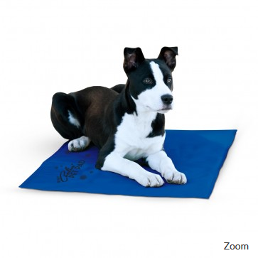 K&H Pet Products Coolin Pad Blue