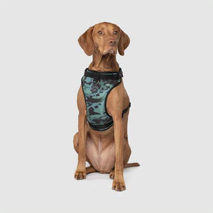 Canada Pooch Everything Harness Water-Resistant Camo