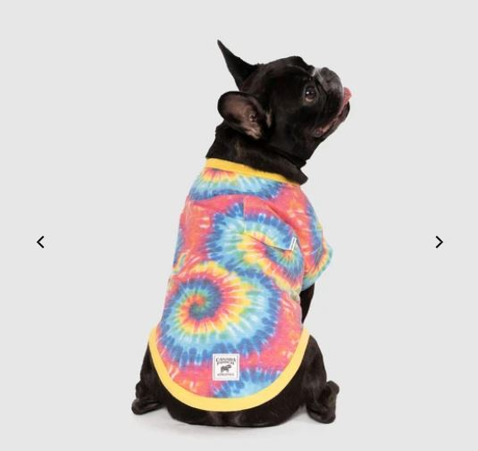 tey dye shirts for pets