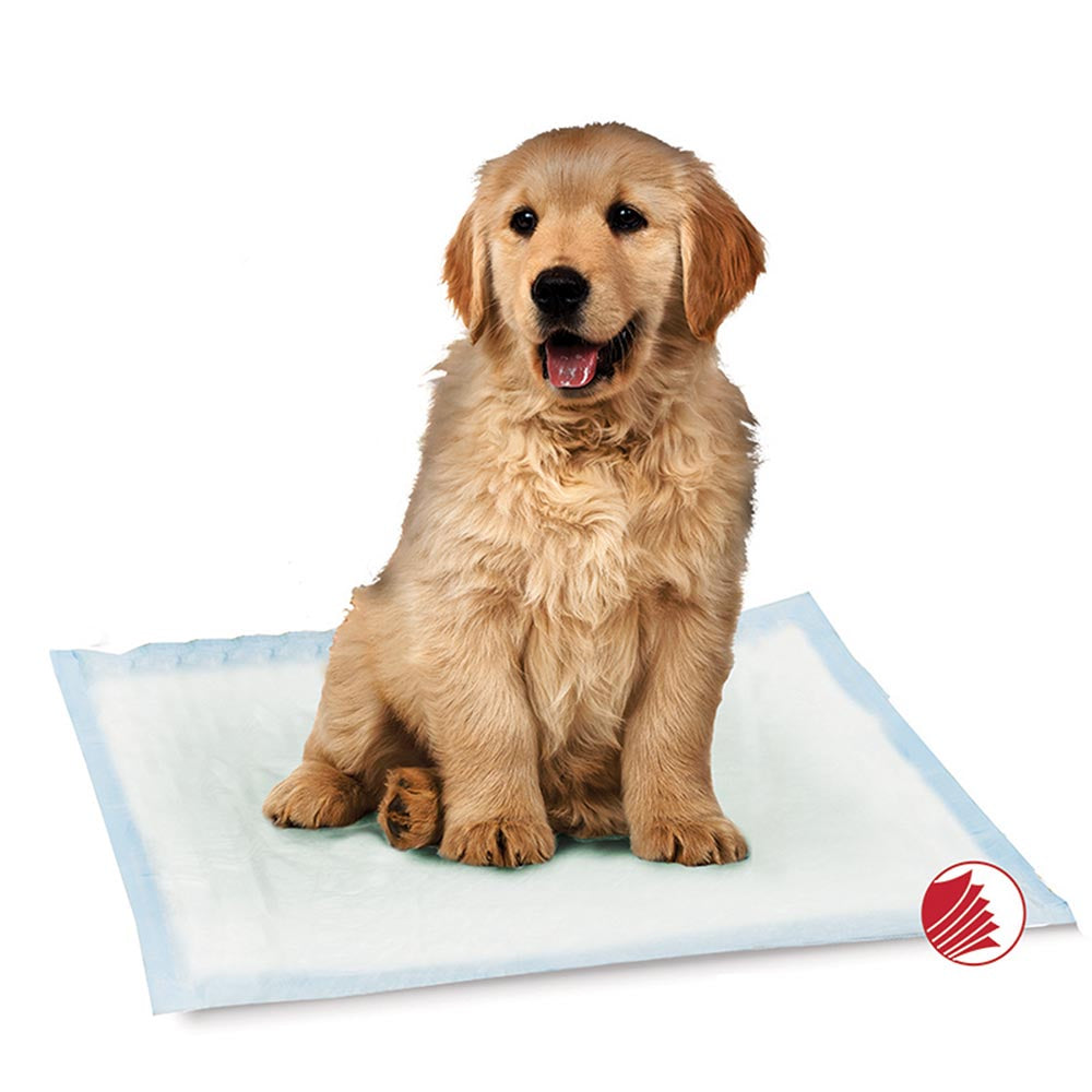 Simply Essential Training Pads for Dogs by Smart Pet Love