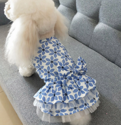 Princess Dress with Bow and Tulle