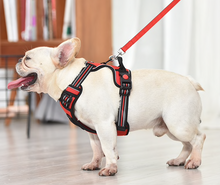 Petkit AirPro Soft Vest Harness for Small to Medium Dogs