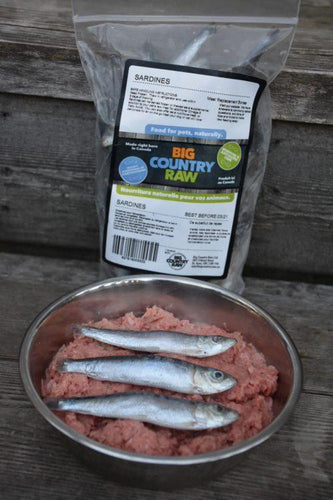 Fresh Frozen Sardines 1lb Bag