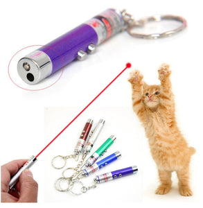 Cat Laser LED Light