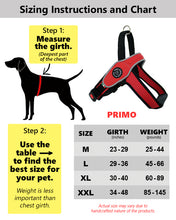 Tre Ponti PRIMO Harness for Medium/Large Dogs