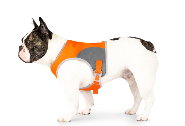 Canada Pooch Safety Vest Orange