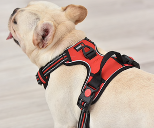 Seny Adjustable Reflective No Pull Harness in 4 Colors & S-XL