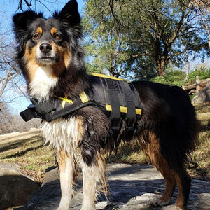 XDOG Weight & Fitness Vests for Dogs