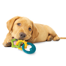Nylabone Puppy Power Chew Puppy Teething Rings Bacon Flavor 1ea/Small/Regular - Up To 25 Ibs.